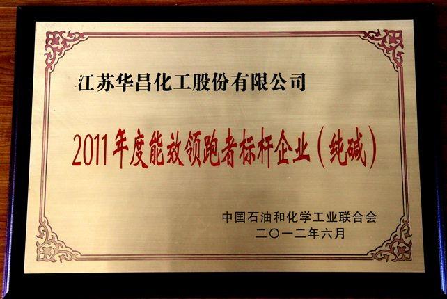 2011年度中国石油化工协会能效领跑标杆企业(纯碱)