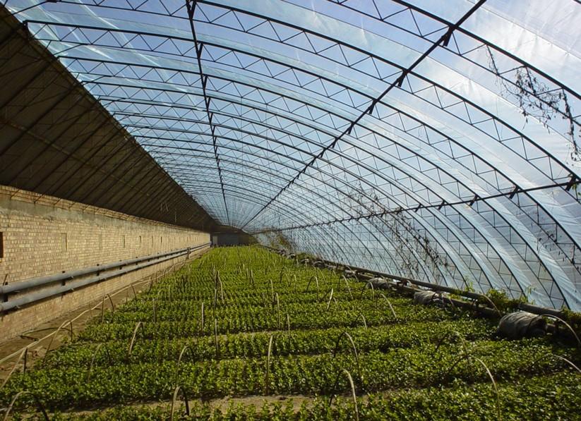 农膜产业为现代农业铺路