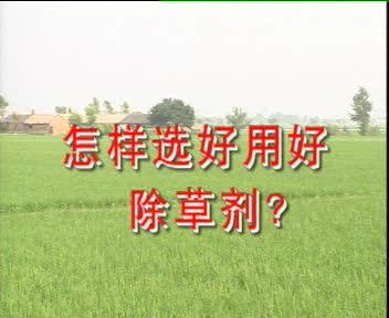 怎样选好用好除草剂?