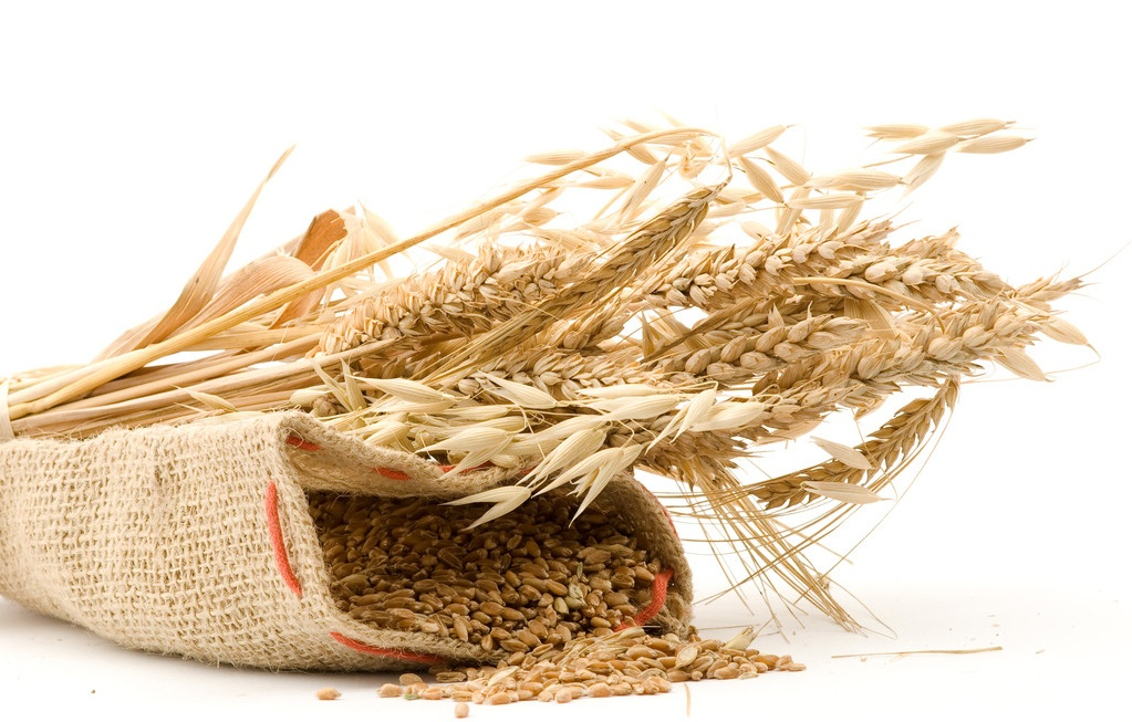 小麦除草剂使用方法