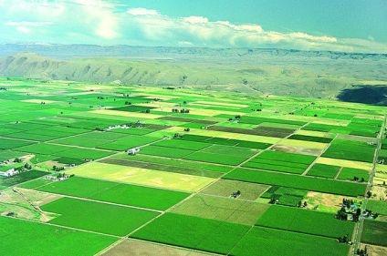 中央财政235亿元建设高标准农田