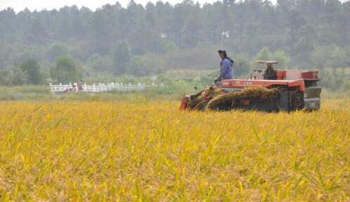 发改委:确保实现2020年农民人均收入比2010年翻番