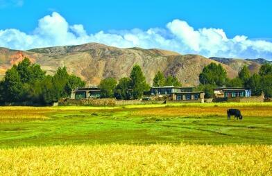 专家:青藏高原最适合下一代农业
