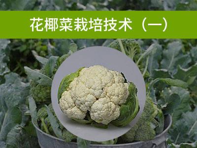 花椰菜栽培技术(一)