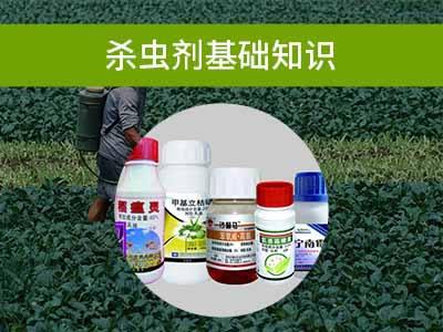 杀虫剂基础知识