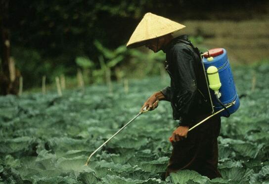 农药管理新政直指行业痛点