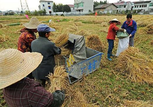 浙江农村居民人均收入连续33年居全国省区首位