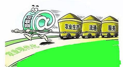 """电商咋助扶贫 发展""""互联网+农业""""增农收入"""