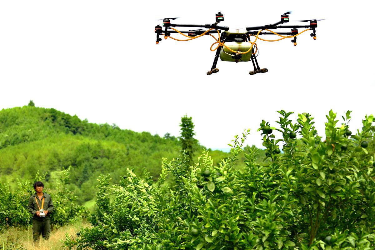 培育新型农业经营主体的困境与对策