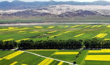 全国前7个月农业农村经济运行平稳向好