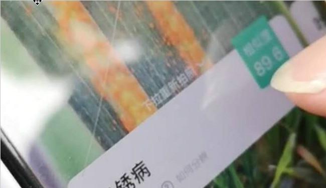"""浙江之声:浙江摁下农业农村复工复产""""快进键"""""""