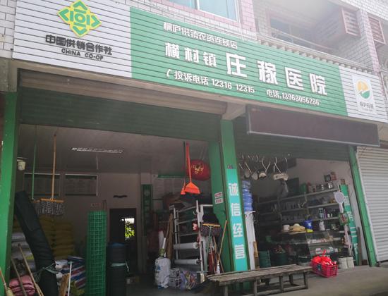 横村镇新型庄稼医院